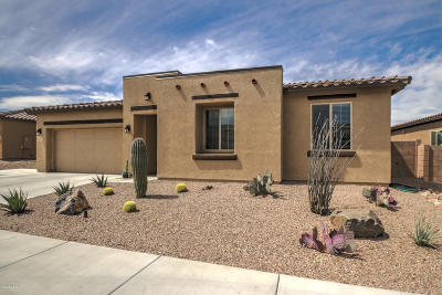 Sahuarita Single Family Home For Sale: 1112 W Golden Meadow