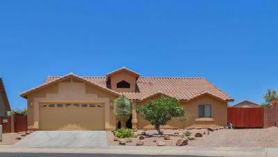 Pima County, Pinal County Single Family Home Active Contingent: 9251 S Ravens Roost Court