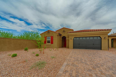 Tucson Single Family Home For Sale: 13352 N Flaxleaf Place