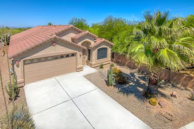 Tucson Single Family Home Active Contingent: 8325 N Austin Nikolas Court
