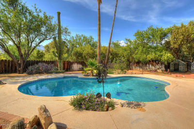 Pima County, Pinal County Single Family Home Active Contingent: 10605 E Camino Tesote Place