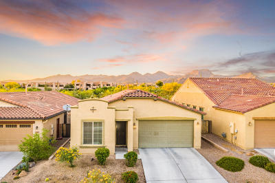 Marana Single Family Home Active Contingent: 11993 N Golden Mirror Drive