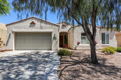 Pima County Single Family Home For Sale: 255 E Via Puente De La Lluvia