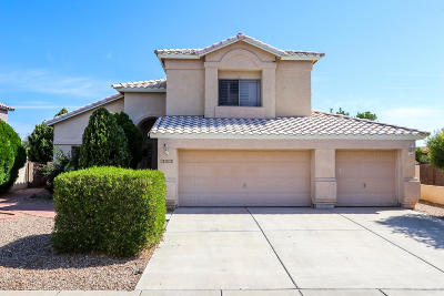 Single Family Home For Sale: 7358 W Silver Sand Drive