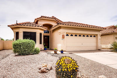 Oro Valley Single Family Home For Sale: 12171 N Seasons Loop