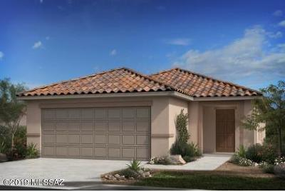Tucson Single Family Home For Sale: 8639 N Rome Court
