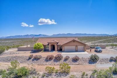 Cochise County Single Family Home For Sale: 579 N Rustlers Ridge Road