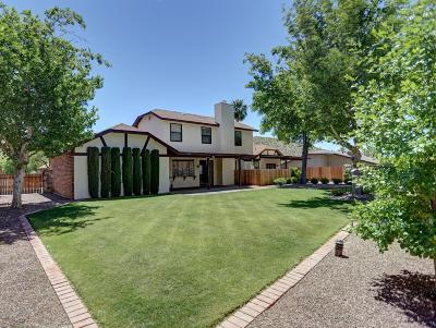Tucson Single Family Home For Sale: 4301 N Ventana Drive