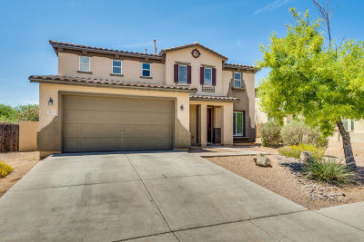 Pima County Single Family Home For Sale: 563 W Calle La Bolita