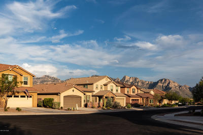 Oro Valley Single Family Home Active Contingent: 12967 N Shell Traders Court