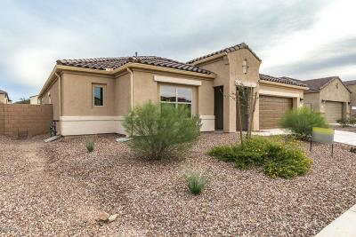 Marana Single Family Home For Sale: 8861 W Saguaro Skies Road