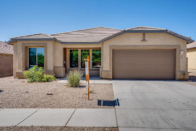 Vail Single Family Home For Sale: 327 E Desert Haven Place