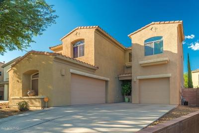 Pima County, Pinal County Single Family Home For Sale: 10041 E Country Shadows Drive