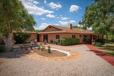 Tubac Single Family Home For Sale: 158 Bridge Rd