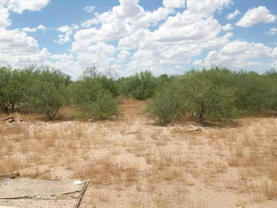 Tucson Residential Lots & Land For Sale: 4294 S Dusty Flat Trail