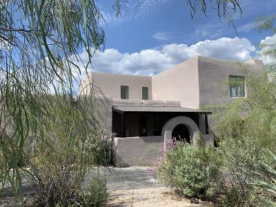 Tucson Single Family Home For Sale: 10001 E Mount Pleasant Drive