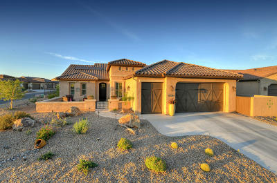 Oracle Single Family Home For Sale: 31799 S Flat Rock Drive