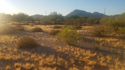 Tucson Residential Lots & Land For Sale: 6171 W Irvington Road