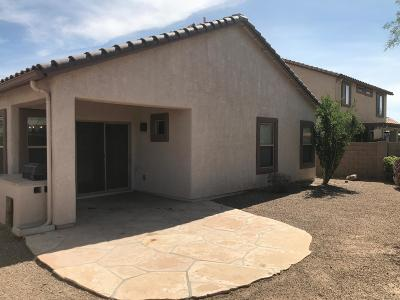Marana Single Family Home For Sale: 11398 W Massey Drive
