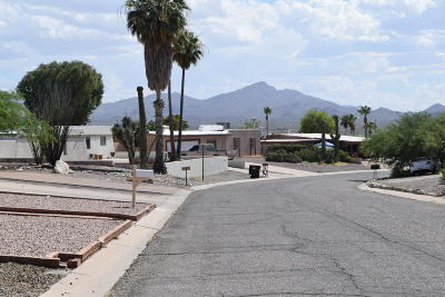 Pima County Single Family Home Active Contingent: 4123 W Jupiter Street