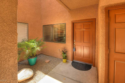 Tucson Condo For Sale: 5051 N Sabino Canyon Road #1199