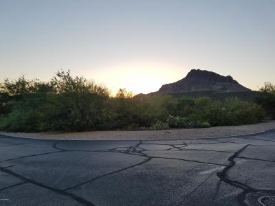 Tucson Residential Lots & Land For Sale: 5620 W Triangle X Place #116