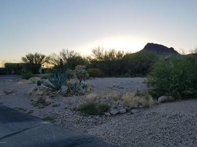 Tucson Residential Lots & Land For Sale: 5550 W Lone Star Drive #220