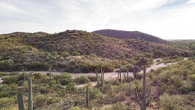 Residential Lots & Land For Sale: 15450 E McKenzie Wash Road