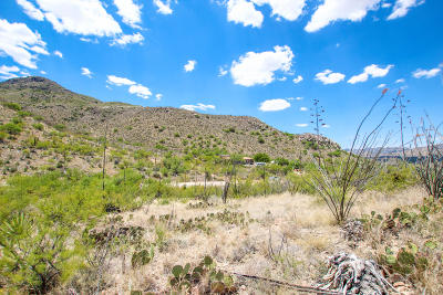 Vail Residential Lots & Land For Sale: 16033 E Hillton Ranch Road