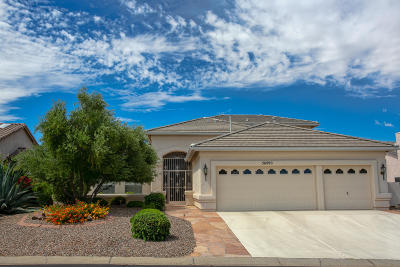 Tucson Single Family Home For Sale: 36890 S Ridgeview Boulevard
