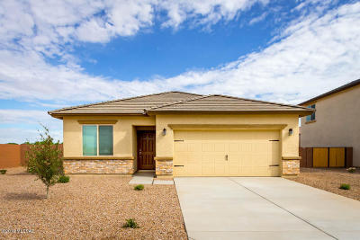 Marana Single Family Home For Sale: 11732 W Thomas Arron Drive