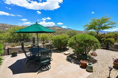 Tucson Single Family Home For Sale: 37813 S Arroyo Way