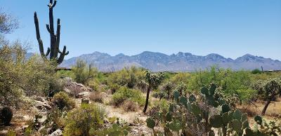 Oro Valley Residential Lots & Land For Sale: 287 E Dusty View Drive #94