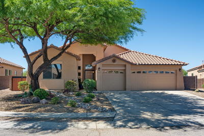 Single Family Home Active Contingent: 10468 E Heartleaf Willow Drive