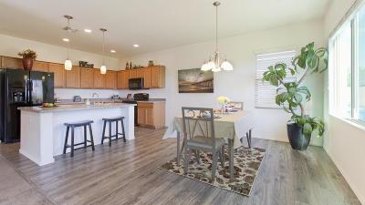 Sahuarita Single Family Home For Sale: 1041 E Madera Grove Lane
