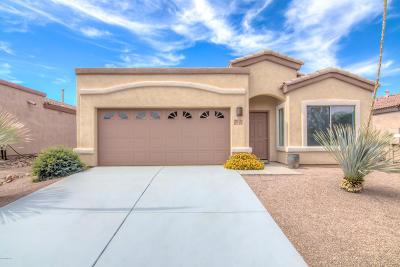 Pima County Single Family Home For Sale: 311 E Placita Nubes Blancas