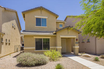 Tucson Single Family Home Active Contingent: 6064 S Sweet Birch Lane