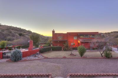 Santa Cruz County Single Family Home For Sale: 102 E Camino Vista Del Cie