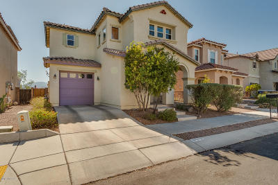 Pima County, Pinal County Single Family Home Active Contingent: 973 S Pantano Overlook Drive