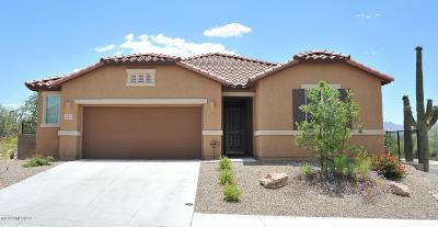 Tucson Single Family Home For Sale: 4985 W Willow Blossom Drive