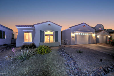 Pima County Single Family Home For Sale: 345 E Via Puente De La Lluvia