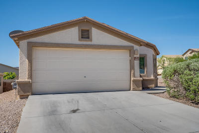Pima County Single Family Home For Sale: 3667 W Avenida Obregon