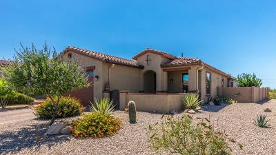 Marana Single Family Home Active Contingent: 12054 N Golden Mirror Drive