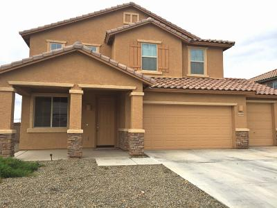 Marana Single Family Home For Sale: 12693 N Greenberry Drive
