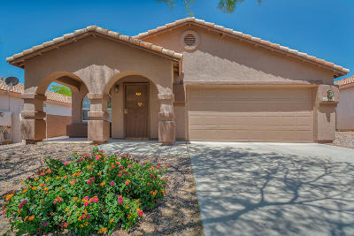 Oro Valley Single Family Home For Sale: 12253 N Brightridge Drive