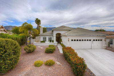 Pima County, Pinal County Single Family Home For Sale: 36977 S Ribbonwood Lane