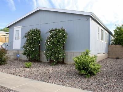 Pima County Manufactured Home For Sale: 2960 E Cottonwood Club Lane