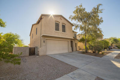 Pima County Single Family Home For Sale: 6930 S Wingbow Drive