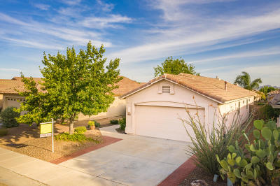 Pima County Single Family Home Active Contingent: 2589 W Bluffs Peak Court
