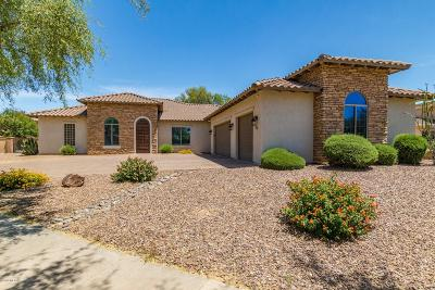 Pima County Single Family Home For Sale: 201 E Placita Haciendas Del Lago
